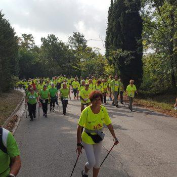 Camminata roccaccia 2018 percorso